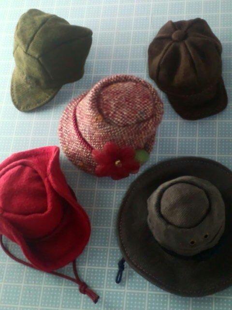 hat _variety_f