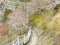 長崎旅行_聖地_出雲近隣公園_013