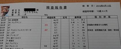 20190413検査結果1