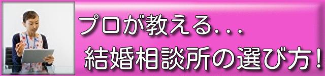 10【千葉】結婚相談所 ねむの木 『プロが教える結婚相談所の選び方』の詳細を見る