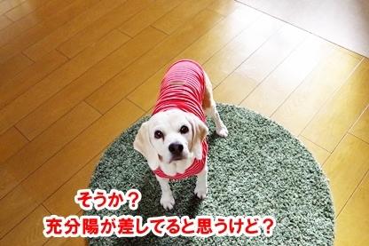 天気悪い 1