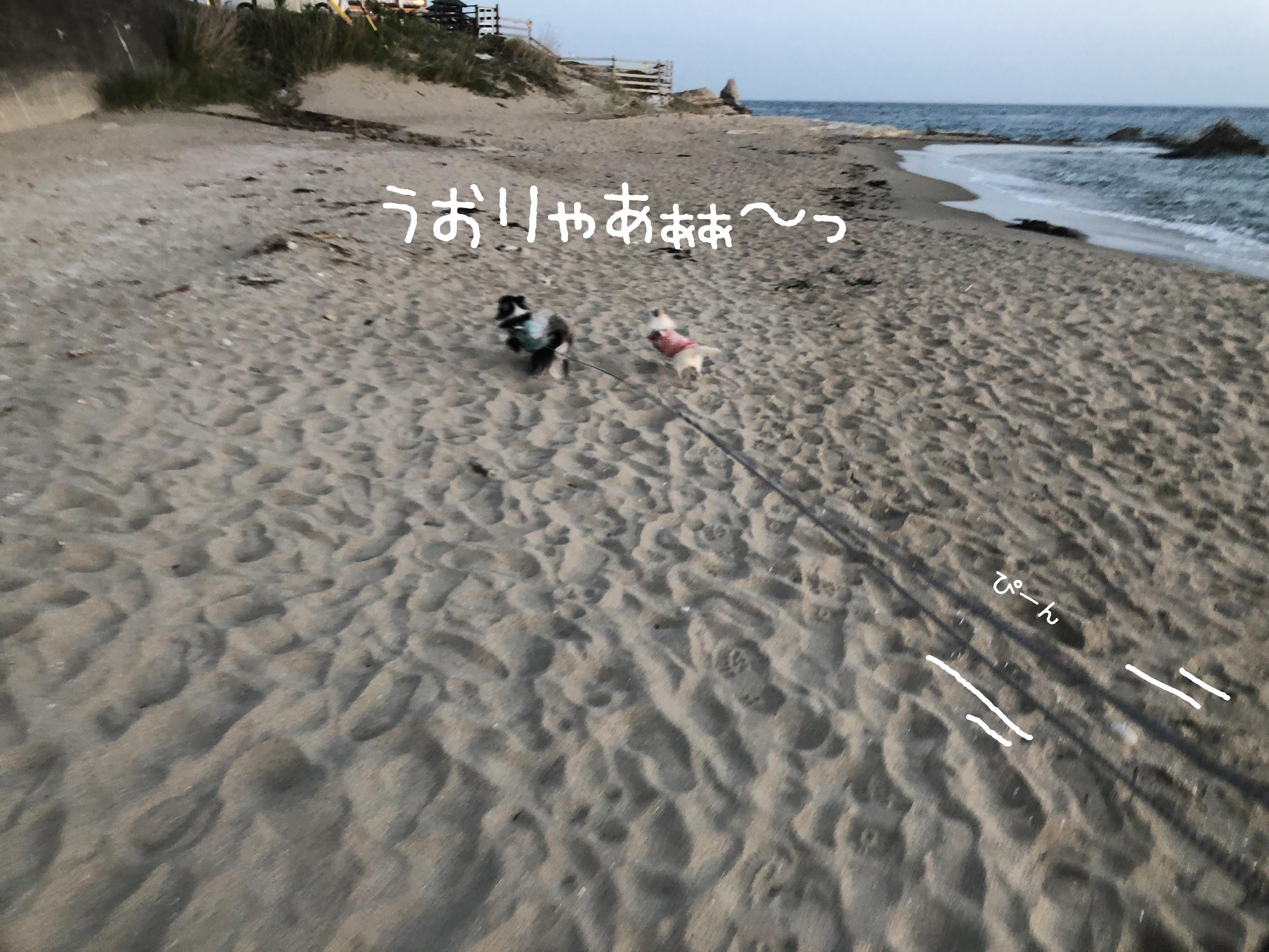 1905爆走01_2