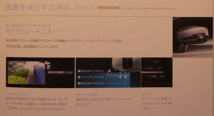 P1670113_.jpg