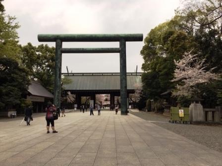 19sakuraichigaya2_6290.jpg