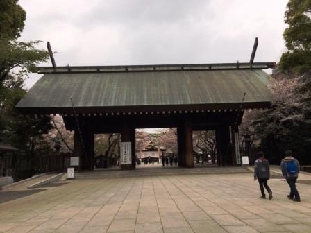19sakuraichigaya3_6292.jpg