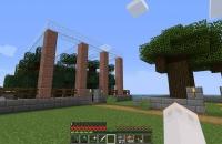 20190511村の植林場