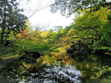 根津庭園1