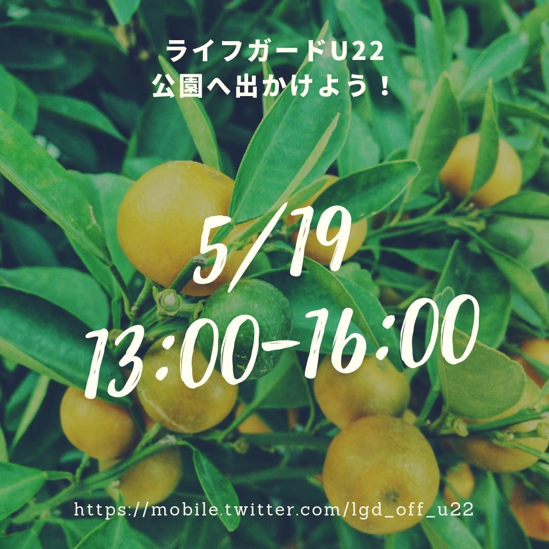 S__49119295.jpg