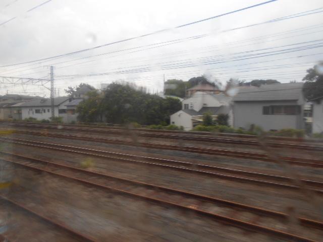 DSCN4668.jpg