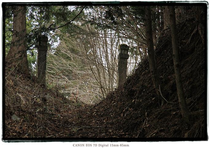 1903naganohaiko03.jpg