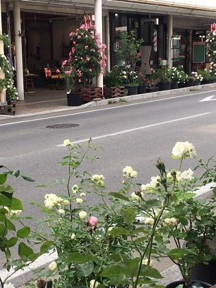 バラ町商店街