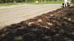 190422トマト圃場に堆肥撒く