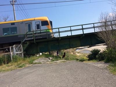 20190402 おさんぽ電車 (2)