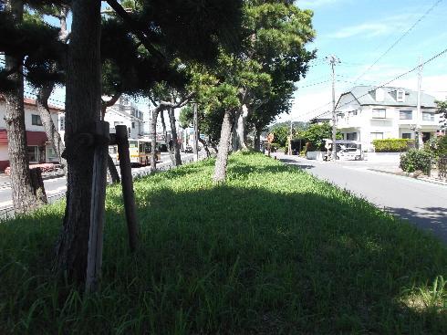 1号線と旧東海道
