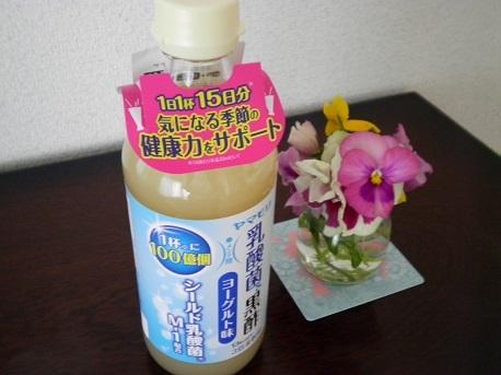 yamamori1-1.jpg