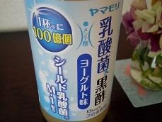 yamamori1-2.jpg