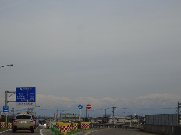 DSC05531.jpg