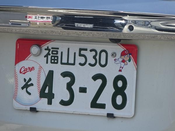 DSC05950.jpg