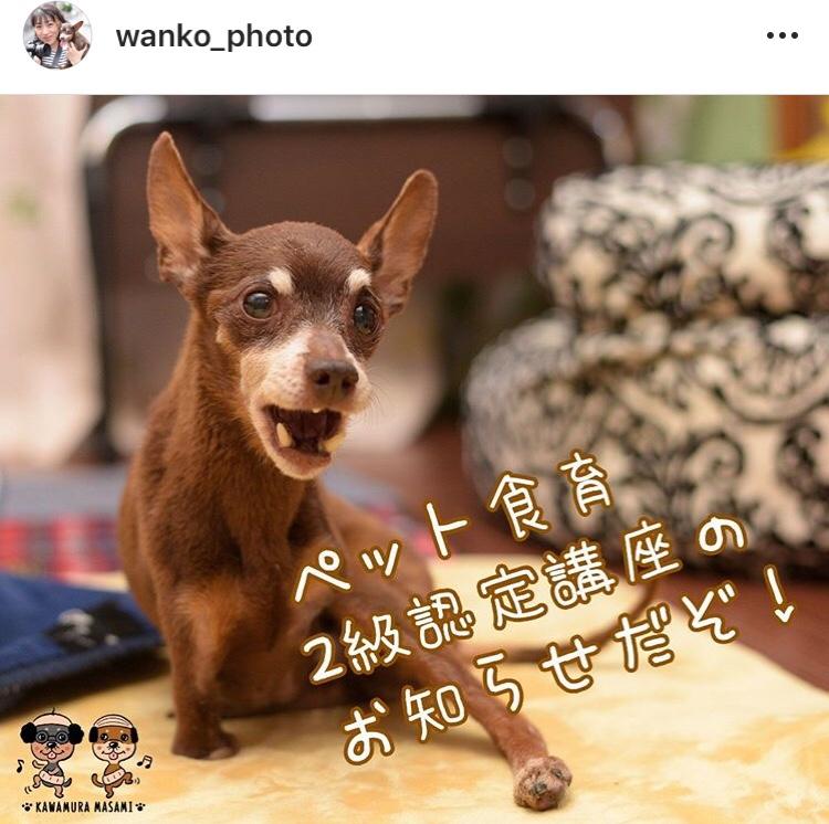 fc2blog_20190514101833c0e.jpg