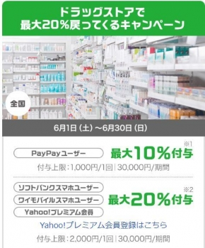 paypay6.jpg