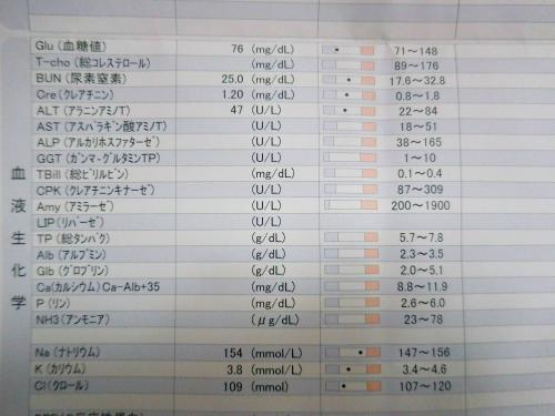 血液検査201905_02