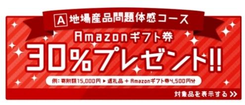 Aコース|アマゾンギフト券30%