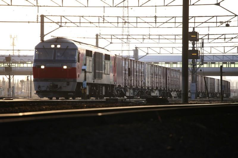 DF115IMG_9903-2.jpg