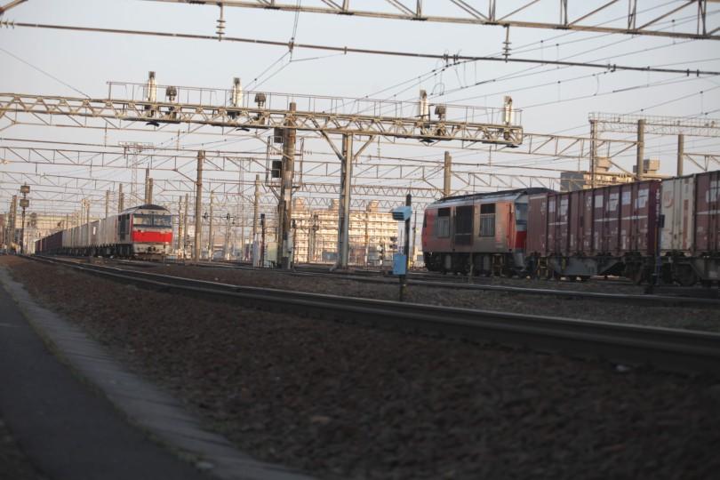 DF115IMG_9905-2.jpg