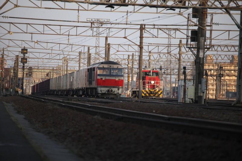 HD502IMG_9887-2.jpg