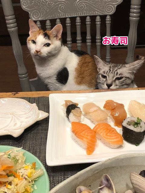 18お寿司