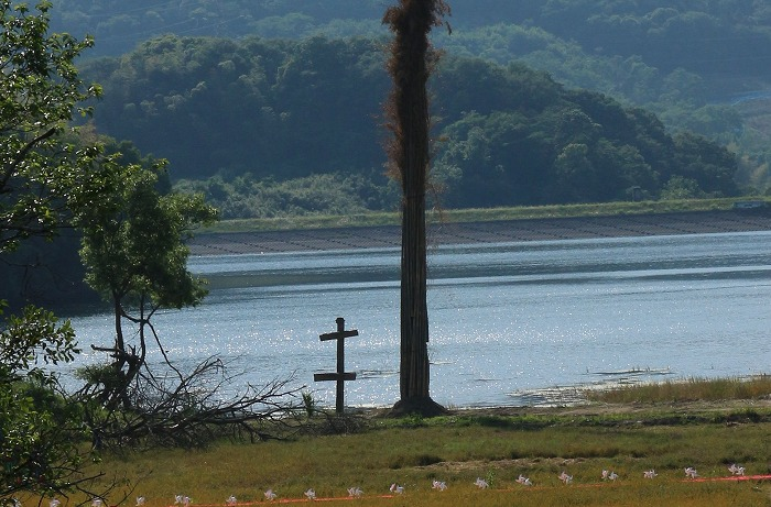 たんぼアート 岩瀬池 横に 1 5 25
