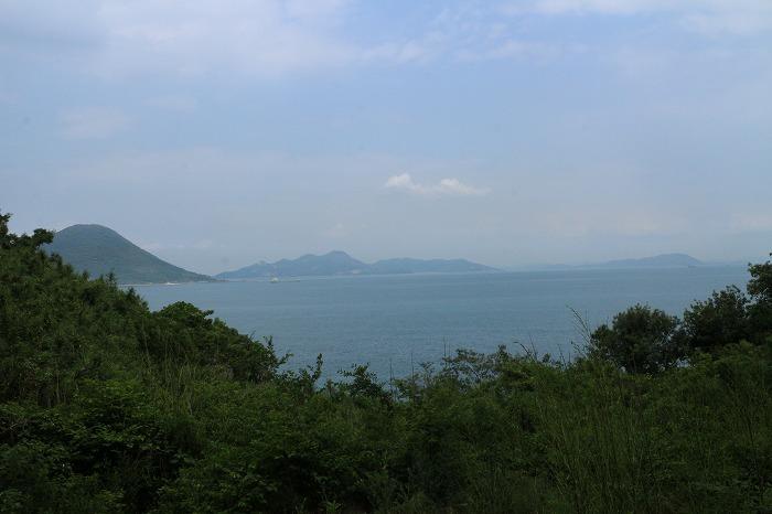 志士島大楠から海を見る東北 1 6 11