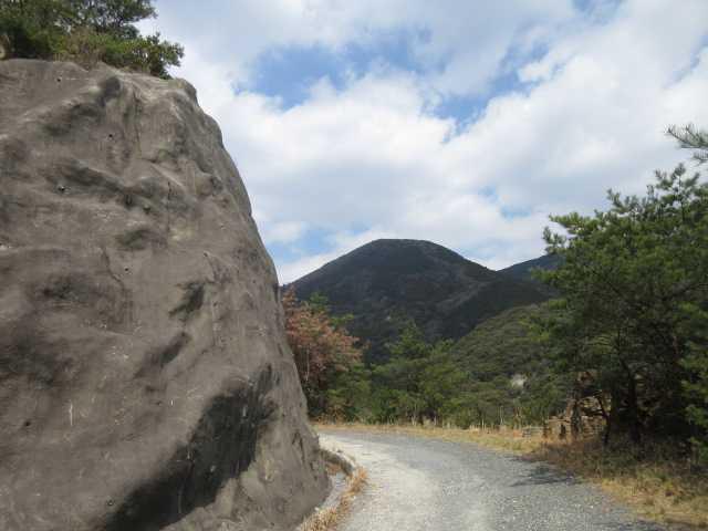 IMG0092JPG大栂林道より鷹取山