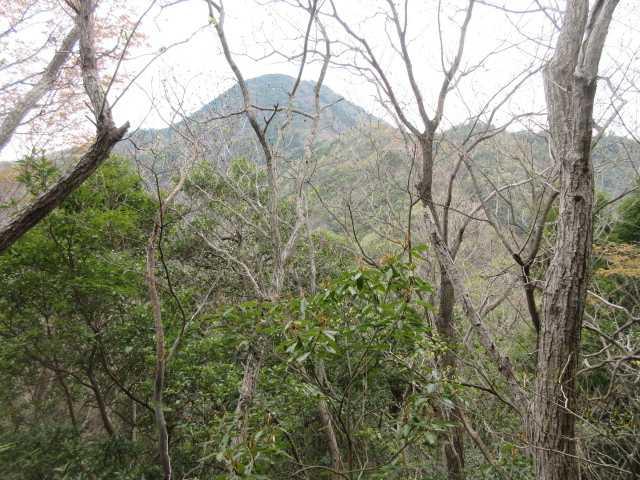 IMG0015JPG眼前に石山