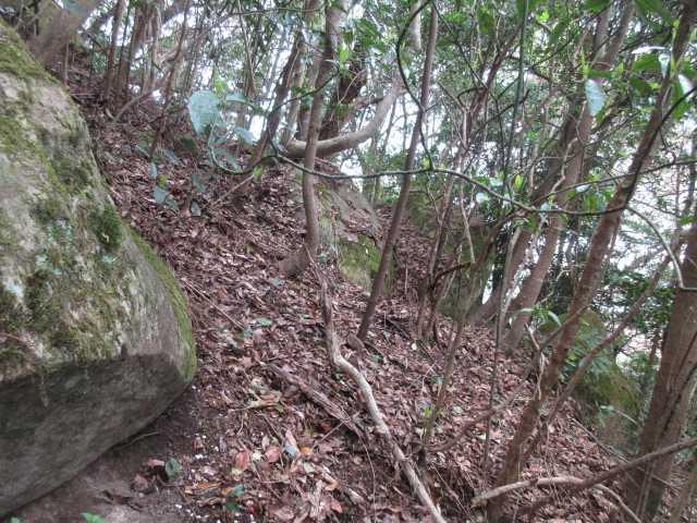 IMG0032JPG鬼落山への急登
