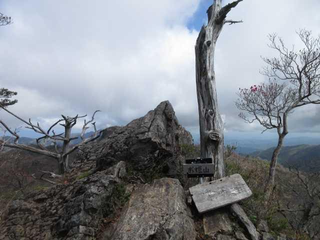 IMG0100JPG御姫山山頂