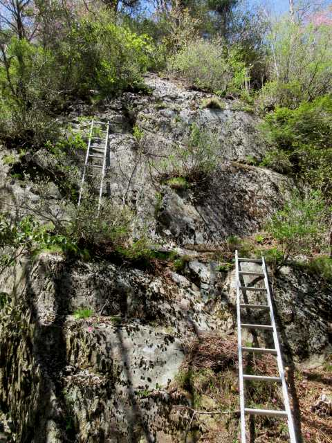 IMG0172JPG2段梯子