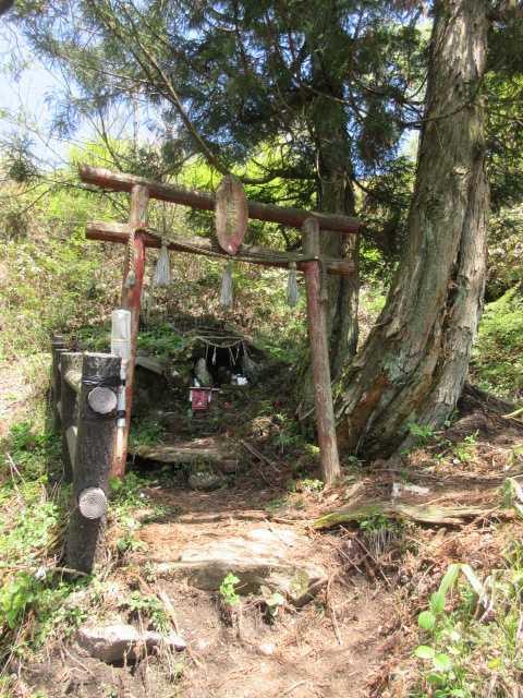 IMG0276JPG熊野権現