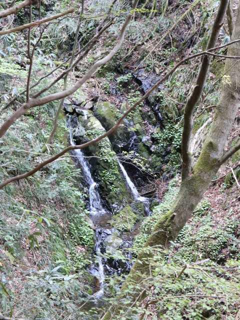 IMG1043JPG小滝
