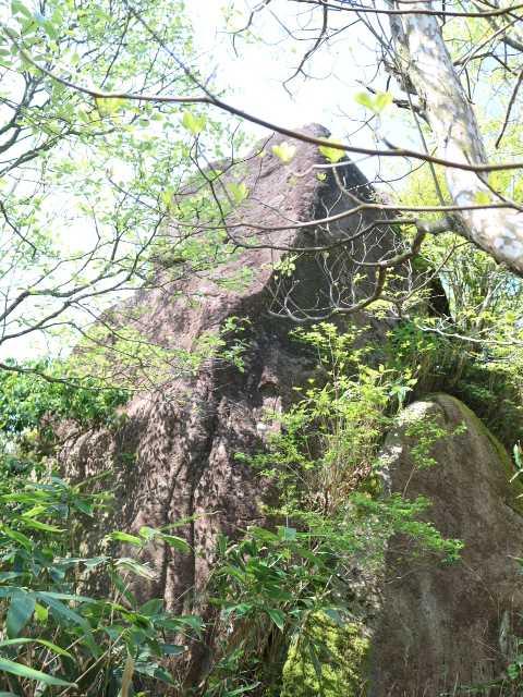 IMG1099JPG縦走路の大岩