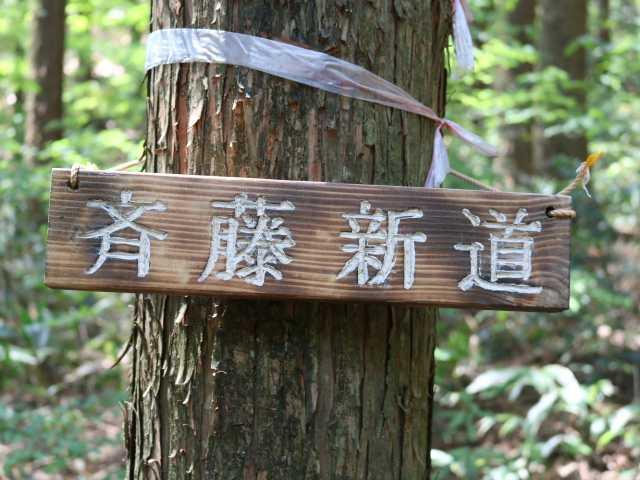 IMG1140JPG斎藤新道