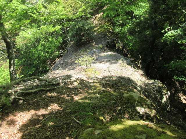 IMG0106JPG岩陵