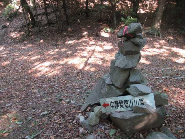 IMG0017JPG上部林道に登り着く