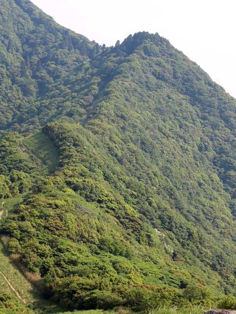 IMG1765JPG妙見山北側
