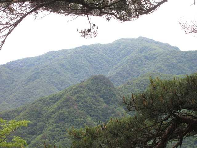 IMG0034JPG縦走路から祖母山