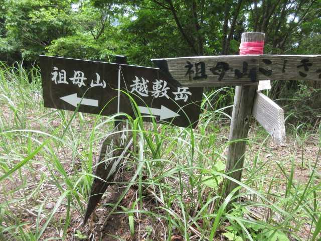 IMG0055JPG三県境分岐