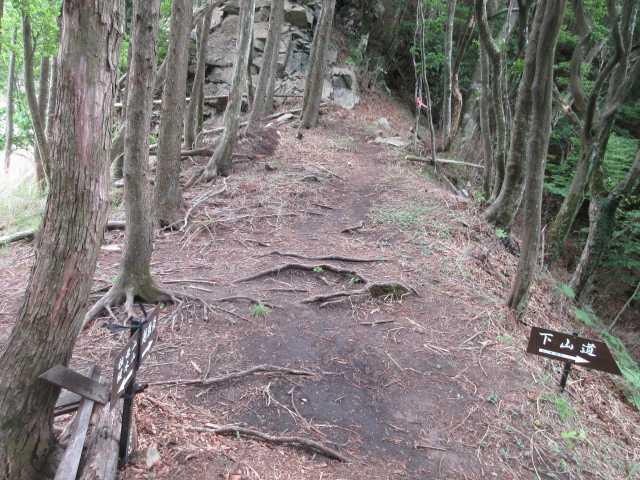 IMG0075JP越敷岳下山口