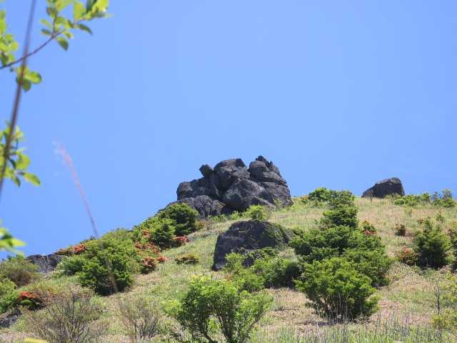 IMG1922JPG南面から山頂