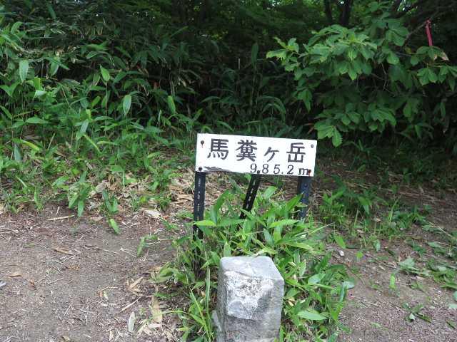 IMG1990JPG馬糞ケ岳標識