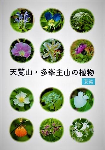 ☆天覧山・多峯主山の植物【夏辺】